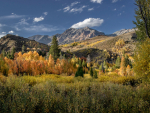 Fall-Bouder-Mtns-65-x38-C3--2