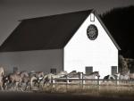 Reinheimer-Barn